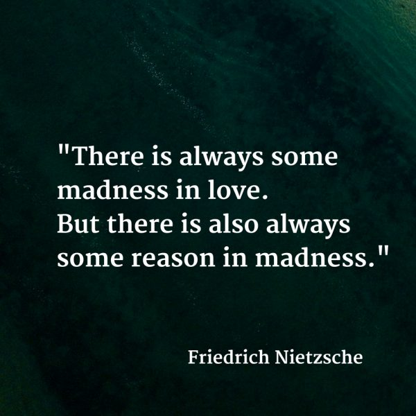 what is madness in love