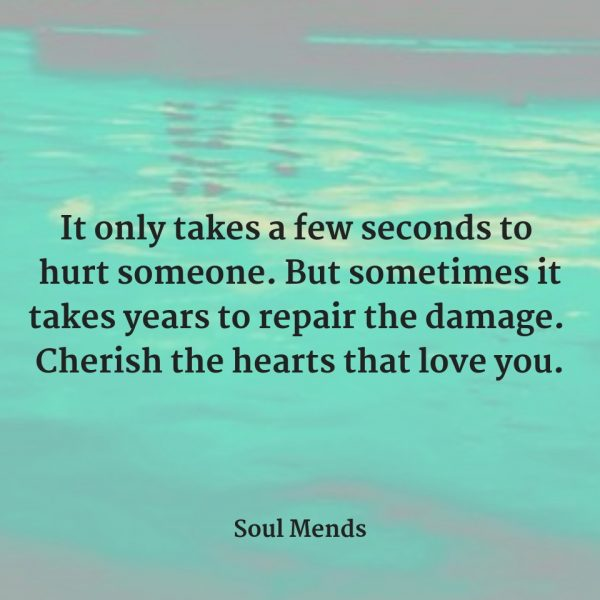 Cherish The Hearts That Love You - SOUL MENDS